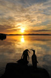 Nascer do sol sobre a escultura de Penquin fotos de stock