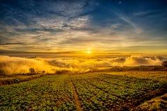 Nascer do sol sobre a montanha em Phu Tab Berk Imagem de Stock Royalty Free