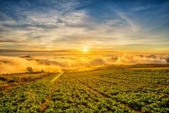 Nascer do sol sobre a montanha em Phu Tab Berk Fotos de Stock