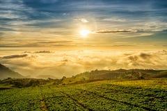 Nascer do sol sobre a montanha em Phu Tab Berk Foto de Stock