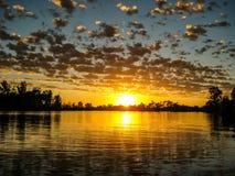 Nascer do sol sobre Murray River Imagem de Stock Royalty Free