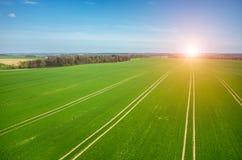 Nascer do sol sobre o campo Imagens de Stock