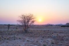 Nascer do sol sobre o deserto de Namib, roadtrip no parque nacional maravilhoso de Namib Naukluft, destino do curso em Namíbia, Á foto de stock
