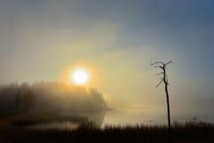 Nascer do sol sobre o lago Imagens de Stock