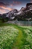 Nascer do sol sobre o lago em alpes suíços Foto de Stock Royalty Free