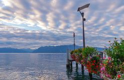 Nascer do sol sobre o lago Leman e flores Fotos de Stock