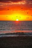 Nascer do sol sobre o oceano imagem de stock royalty free