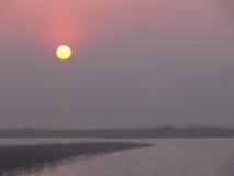 Nascer do sol sobre o pântano do rio Imagem de Stock