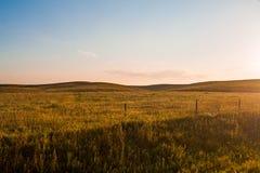 Nascer do sol sobre o pasto Fotografia de Stock