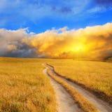 Nascer do sol sobre o prado Fotos de Stock