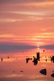 Nascer do sol sobre o rio perto da costa Imagens de Stock