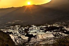 Nascer do sol sobre o terraço do arroz em Yuanyang, Yunnan, China Fotografia de Stock