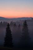 Nascer do sol sobre o vale enevoado Imagem de Stock Royalty Free