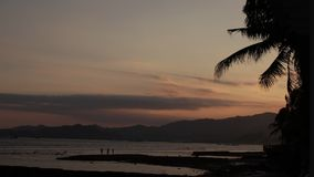 Nascer do sol sobre a praia da ilha e palmeiras tropicais, ilha de Bali video estoque