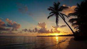 Nascer do sol sobre a praia da ilha e a República Dominicana tropicais de Punta Cana das palmeiras