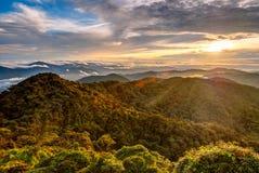 Nascer do sol sobre a selva em montanhas de Cameron, Malásia fotografia de stock