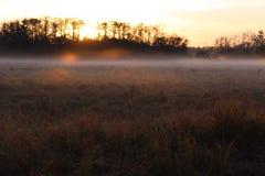 Nascer do sol sobre um campo dos fazendeiros com névoa e orvalho na grama fotos de stock royalty free