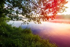 Nascer do sol sobre um rio nevoento enevoado, paisagem do verão fotos de stock