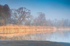 Nascer do sol sobre uma lagoa enevoada Imagens de Stock