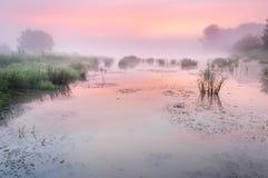 Nascer do sol sobre uma lagoa enevoada Foto de Stock Royalty Free