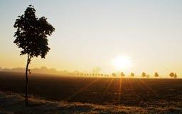 Nascer do sol sobre uma paisagem Imagem de Stock