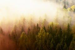 Nascer do sol sonhador fantástico acima do vale profundo escondido as montanhas rochosas imagens de stock