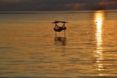 Nascer do sol tropical da ilha Imagens de Stock