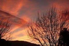 Nascer do sol vívido em New mexico foto de stock