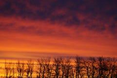 Nascer do sol vermelho brilhante Foto de Stock Royalty Free