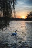 Nascer do sol vibrante bonito da mola sobre o lago calmo na contagem inglesa Fotos de Stock Royalty Free