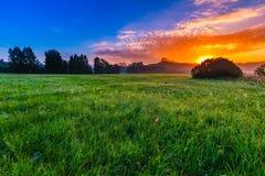 Nascer do sol vibrante do verão sobre o prado nevoento, mágico Fotografia de Stock