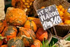 Naschmarkt Pumpkins Royalty Free Stock Image