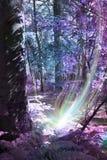 Nascita di spirito dell'albero immagine stock