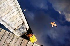 Nase des hölzernen Bootes am Pier und an den Blättern mit Himmelreflexion Lizenzfreies Stockbild