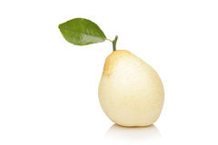 Nashi Pear Royalty Free Stock Image