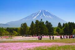 NASHIYAMA, JAPAN im Mai 2015: Leute von Tokyo und von anderen Städten kommen zu Mt Fuji und genießen die Kirschblüte am Frühling  Lizenzfreie Stockfotografie