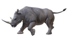 Nashorn Vektor Abbildung