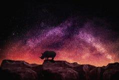 Nashorn, das an Klippen Astro-Fotografie steht Lizenzfreies Stockfoto