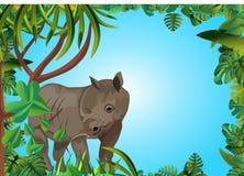 Nashorn im Dschungel, Blumenrahmen stockfotos