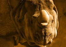 Nashorn Sepia Stockbild