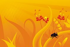 Nashornprogrammfehlerblumen des orange Grases Lizenzfreies Stockbild
