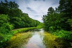Nashua rzeka przy kopalnia spadków parkiem w Nashua, New Hampshire Obrazy Stock