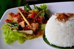 Nasi ayam bumbu bali stock photography