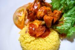 Nasi ayam merah 图库摄影