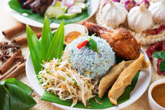 Nasi kerabu Stock Photography