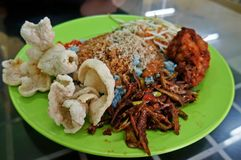 Nasi Kerabu, Voedsel Stock Foto