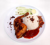 Nasi lemak Royalty Free Stock Photo