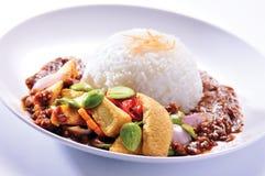 Nasi lemak Royalty Free Stock Photography