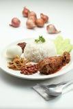 Nasi-lemak Stockbild