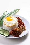 Nasi lemak. Asian spacy coconut rice with egg royalty free stock image